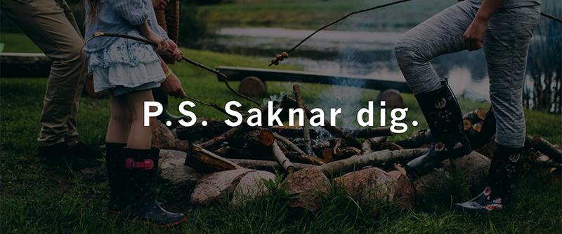 mötesplatser för äldre i piteå landsförs.